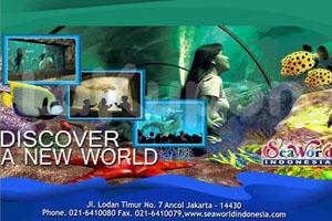 Promo Tiket Masuk Sea World Indonesia Rp. 35.000
