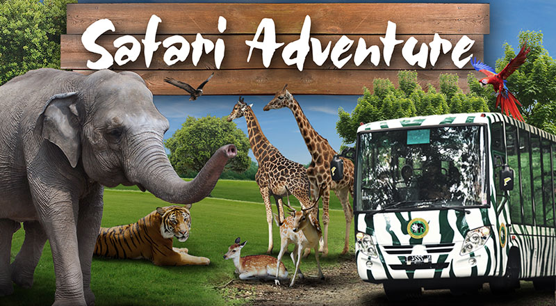 Taman Safari Prigen di Pasuruan, Jawa Timur